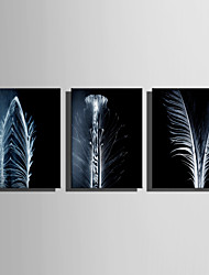 E-HOME Stretched Canvas Art Beautiful White Feathers Decoration Painting One Pcs