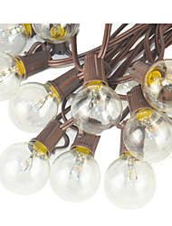 126W W Guirlandes Lumineuses / lm AC 110-130 7.6 m diodes électroluminescentes Blanc chaud