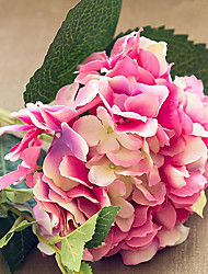 A California Hydrangea flowers Pruning  46CM Flower diameter of about 19CM