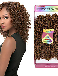 Curly Braids Hair Extensions Kanekalon Hair Braids