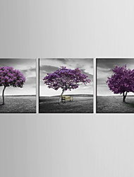 Art PrintThree Panels Square Print Wall Decor For Home Decoration