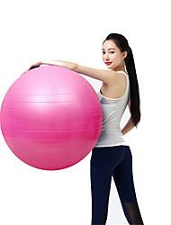 "25 1/2"" (65 cm) Fitness Ball/Yoga Ball Explosion-Proof Yoga PVC"