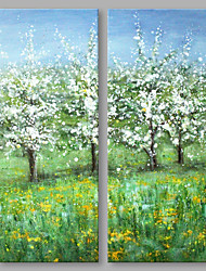 IARTS® Hand Painted Abstract Oil Painting Blossom Wild Flowers & Fruit Tress Set of 2 with Stretched Frame Handmade For Home Decoration Ready To Hang