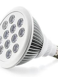 36W E27 Luci LED per la coltivazione 12 LED ad alta intesità 800 lm Rosso Blu V 1 pezzo