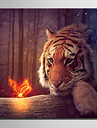 E-HOME® Stretched LED Canvas Print Art Tiger And Butterfly LED Flashing Optical Fiber Print One Pcs