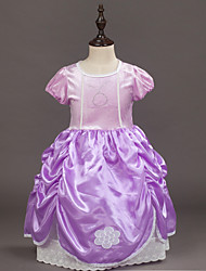 Girl's The Frozen Dress Is The SameRound Neckline Short Sleeves Lace Princess Skirt