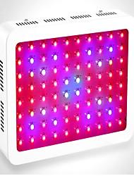 Lampes Horticoles LED Rouge Bleu Vert 1 pièce