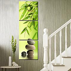 moderne stil naturskønne lærred vægur 3stk k166
