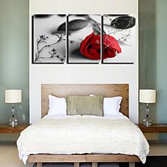 Op gespannen doek kunst Bloemen Lonely Roses Set van 3
