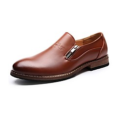 Men's Shoes Wedding / Office & Career / Party & Evening / Dress / Casual Leather Loafers Black / Brown