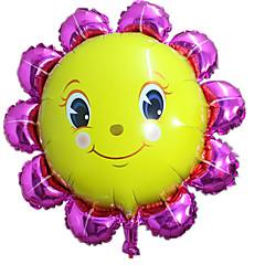 Ballonnen Aluminium 2 tot 4 jaar