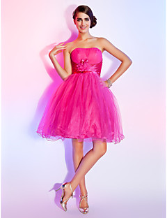 Homecoming Homecoming/Sweet 16 Dress - Fuchsia Plus Sizes Ball Gown/A-line Strapless Short/Mini Tulle