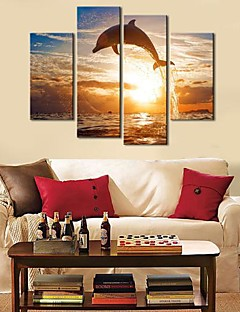 Stretched Canvas Art Animal Dolphin Set of 4