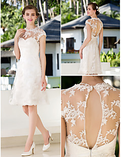A-line/Princess Plus Sizes Wedding Dress - Ivory Knee-length Jewel Lace