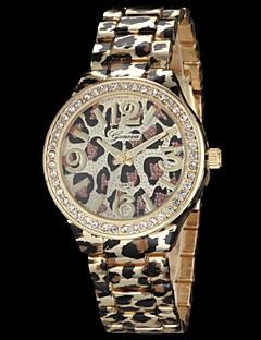 Damen Modeuhr Quartz Legierung Band Leopard Gold / Rotgold Marke-
