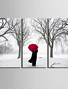E-HOME® Stretched Canvas Art Back Decoration Painting  Set of 3