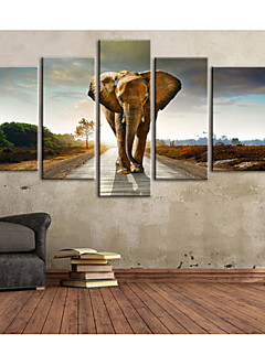 E-Home® Leinwand Kunst Fuß auf der Straße des Elefanten dekorative Malerei Set von 5