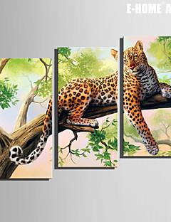 e-FOYER toile tendue art un léopard sur l'arbre peinture décoration ensemble de 3