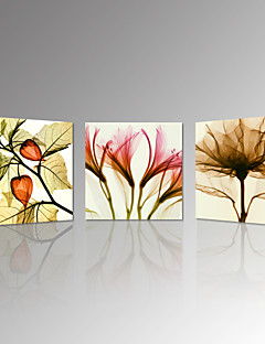VISUAL STAR®3pcs Flickering Flowers Modern Canvas Wall Art Home Decorative Canvas Print Set Of 3 Ready to hang