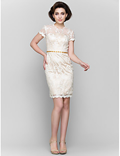 Lanting Sheath/Column Mother of the Bride Dress - Champagne Short/Mini Short Sleeve Lace