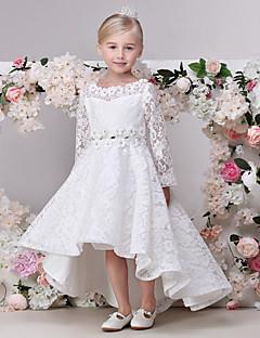 A-line Asymmetrical Flower Girl Dress - Lace Long Sleeve Jewel with