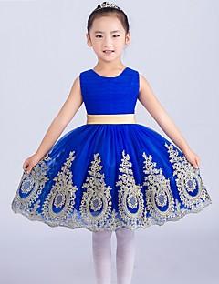 Plesové šaty Krátký / Mini Šaty pro květinovou družičku - Tyl Bez rukávů Klenot s Aplikace / Mašle