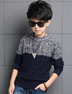Boy's Casual/Daily Patchwork Sweater & CardiganCotton Winter Blue / Red