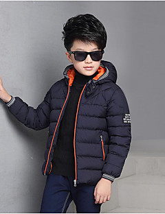 Boy's Casual/Daily Solid Down & Cotton PaddedCotton / Rayon Winter / Spring / Fall Blue / Green