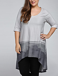 Women's Plus Size Going out Casual/Daily Vintage Chinoiserie Spring Fall Loose T-shirtPrint Ink and Wash Round Neck  Length Sleeve Gray Medium