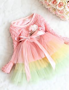 Mädchen Kleid Lässig/Alltäglich Regenbogen Baumwolle Frühling Lange Ärmel