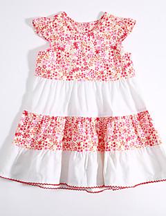 bebê Vestido,Casual Color Block Estampado Algodão-Verão