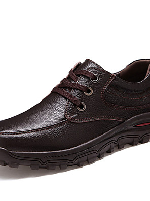 Men's Spring / Summer / Fall / Winter Comfort / Round Toe Leather Office & Career / Casual Flat Heel Lace-up Black / Brown