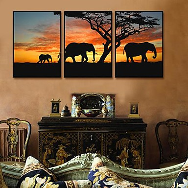 A Picture of Africa Framed Canvas Print Set of 3