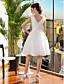 Lanting Bride® С пышной юбкой Для миниатюрных / Большие размеры Свадебное платье До колена Круглый вырез Кружева / Тюль с