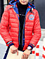 Herre Normal Polstret Langermet Frakk,Enkel Ut på byen / Fritid/hverdag Ensfarget-Polyester Polyester / Hvitt andedun Rund halsBlå / Rød