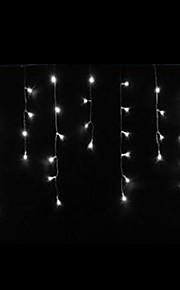 4W 3 Meter lange 100pcs LED-String-Licht mit AC110-220V Eingang PVC transparent, weiße Farbe