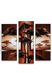 håndmalte art vegg dekor afrika naturen tree olje maleri på lerret 5pcs / set (uten ramme)