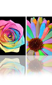 visuaalinen star®colorful kukka venytetään kankaalle tulostus taiteen ryhmä kankaalle seinälle valmis ripustaa