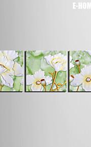 e-Home® venytetty kankaalle taide Valkoiset kukat koriste maalaus sarja 3