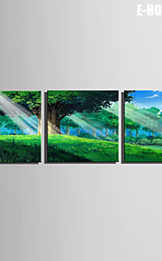 E-Home® Leinwandkunst grünen Wald dekorative Malerei Set von 3