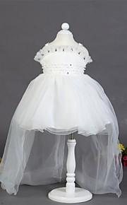 Vestido para Meninas das Flores - Linha-A Comprimento Médio Sem Mangas Cetim/Tule