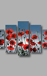 listo para colgar la pintura del arte de la pared estirada enmarcado pintados a mano óleo amapolas rojas cielo azul modernas cinco paneles