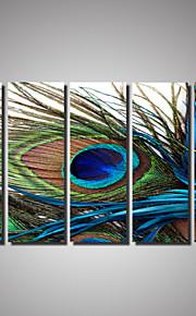 Djur / Landskap / Fotografisk / Romantik Canvastryck Fem paneler Redo att hänga , Horisontell