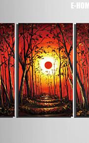 Landskap / Botanisk Lerret Print Tre Paneler Klar til å henge , Lodrett