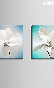 Botanisk Lerret Print To paneler Klar til å henge,Kvadrat