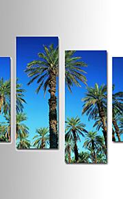 Botanisch Canvas Afdrukken Vier panelen Klaar te hangen,elke vorm