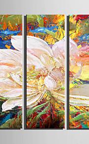 Fantasie / Botanisch Canvas Afdrukken Drie panelen Klaar te hangen,Verticaal