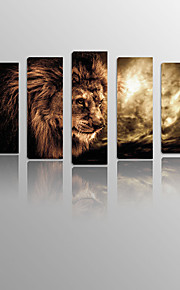 Ferocious lionon Canvas Painting Wood Framed 5 Panels Ready to hang for Living Decor