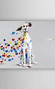 håndmalte oljemaleri dyr rampete hund med strukket ramme 7 veggen arts®