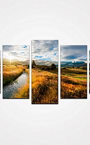 5 Panels Sunshine Mountain and Yellow Grass Canvas Print Modern Wall Art for Home Decor Unframed